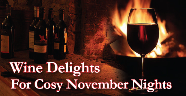Warming Wines for Nights by the Fire